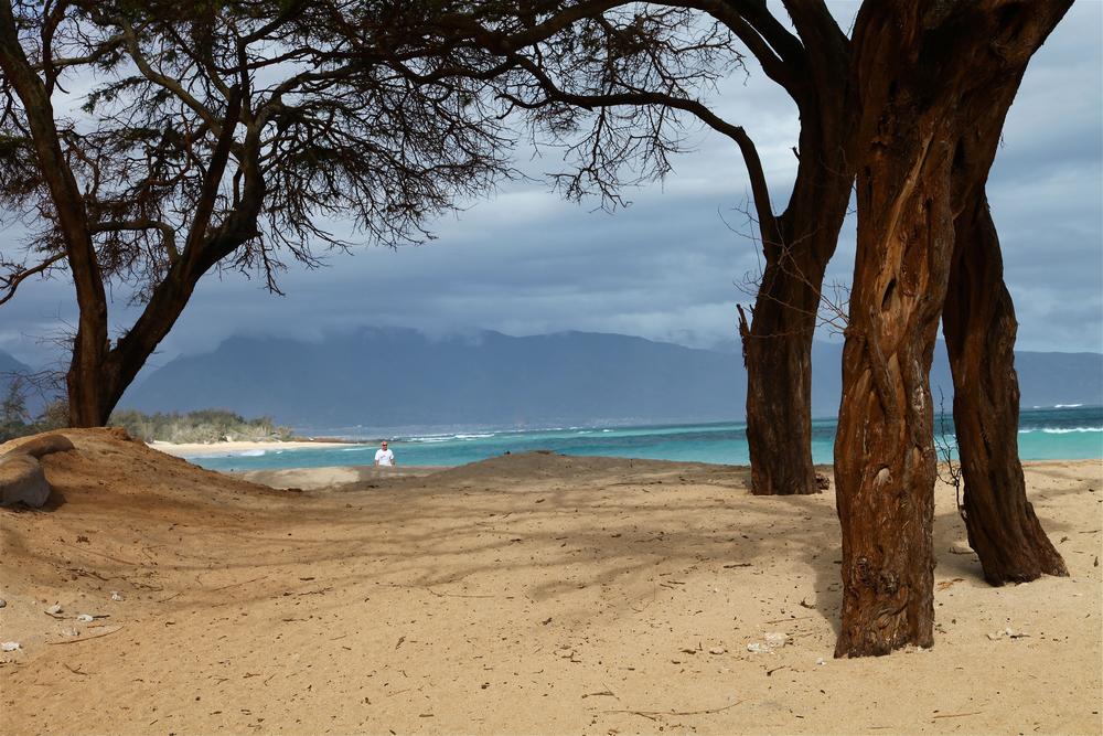 Baldwin Beach 2.jpg
