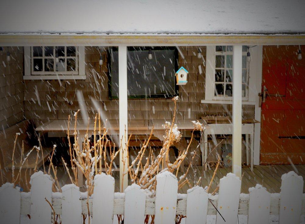 Sconset Snow 5.jpg