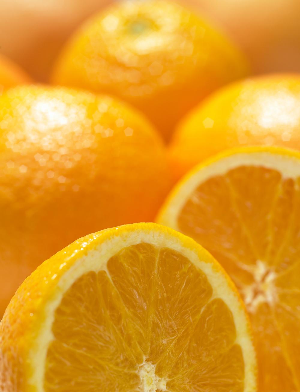 Citrus 2.jpg
