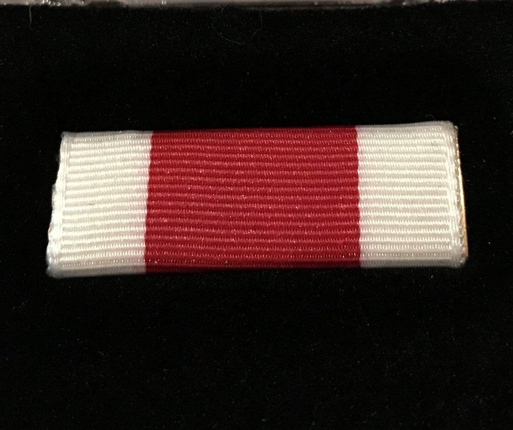 Campaign Ribbon - $10.00