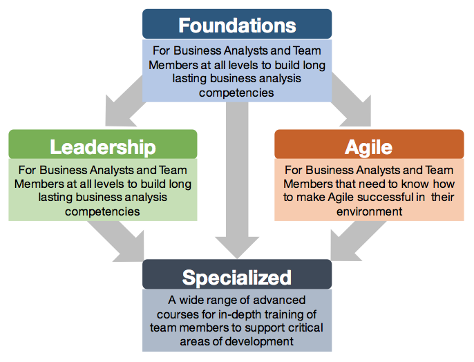 business analyst training paths