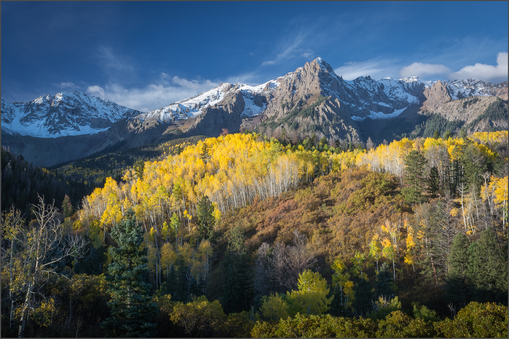 And 'Oberg's Aspen' received an Honorable Mention.
