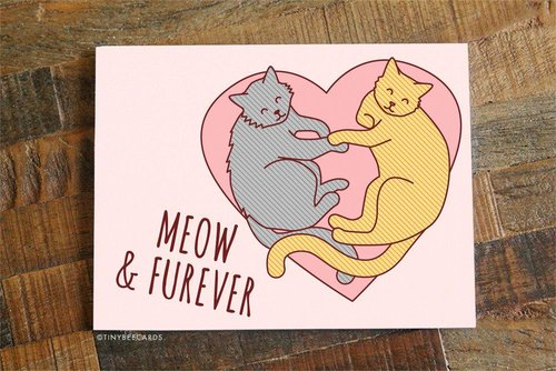 $4.49 MEOW AND FUREVER CAT GREETING CARD