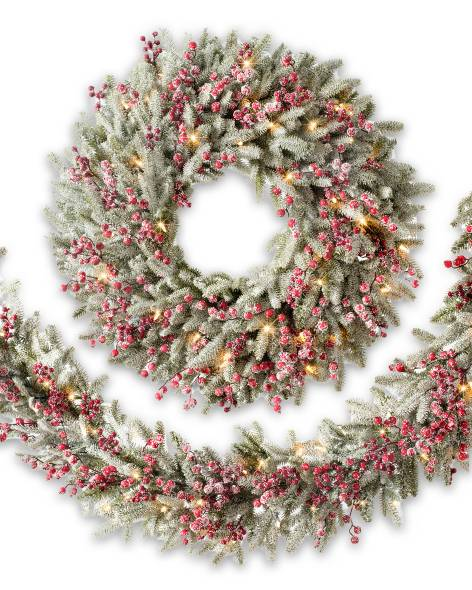 FRA-BW2_Red Berry Frosted Fraser Fir Foliage_Main.jpg
