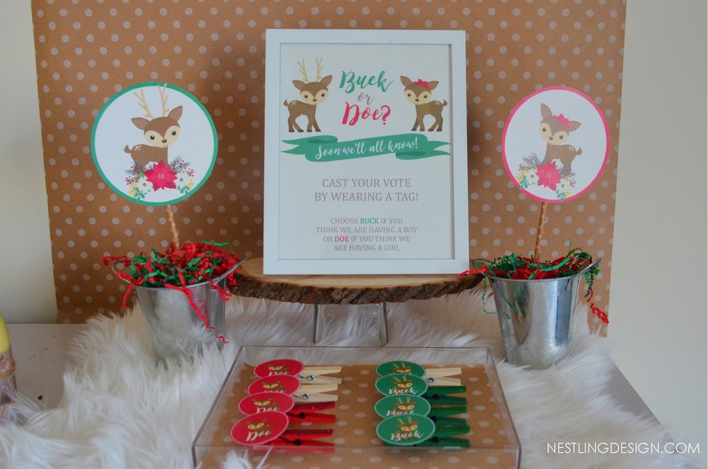 Holiday Gender Reveal Party | NestlingDesign.com