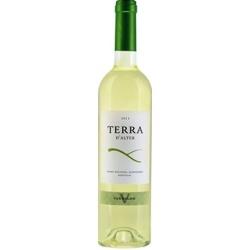 terra-d-alter-verdelho-2012-white-wine.jpg
