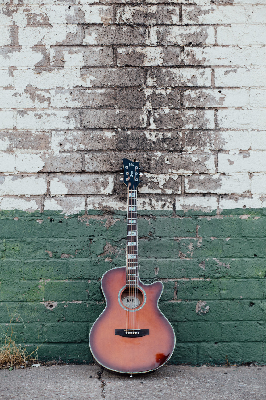 LTD guitar detail instrument