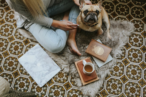 Four books you should read while cuddling your pup (+ a