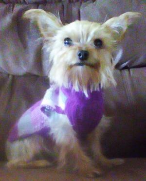 gigi wearing her winter sweater