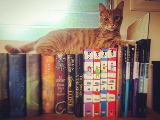 Starting young Franco Francone off with some of my favorites growing up. #kitty #literati #eduCATed