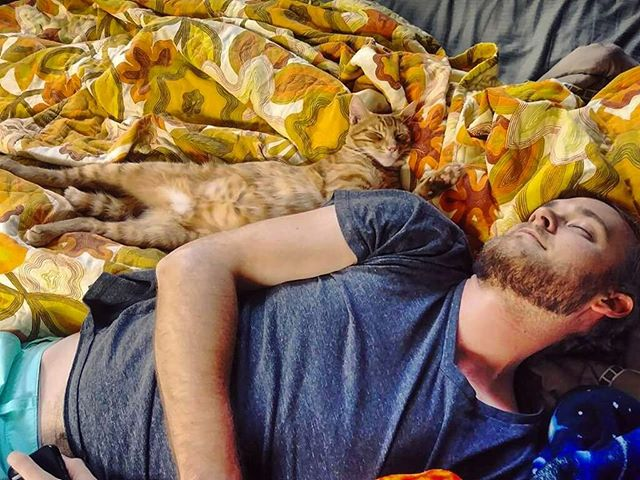 Cat nappin 📷: @jeepsea . . . . . #cat #cats #catsofinstagram #catdad #kitty #kittycat #catnap #likefatherlikeson