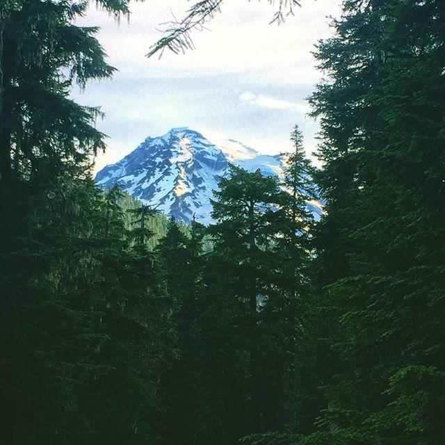 Mt. Rainier, WA . . . . #travel #roadtrip #camping #escape #mountainman