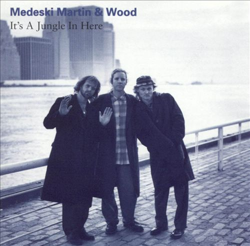 Medeski, Martin & Wood –  It's a Jungle in Here , 1993 (Jazz) / Label – Gramavision Records    Performer