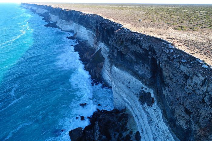The 100m high Nullarbor cliffs are a challenging environment for sea lions and drones!