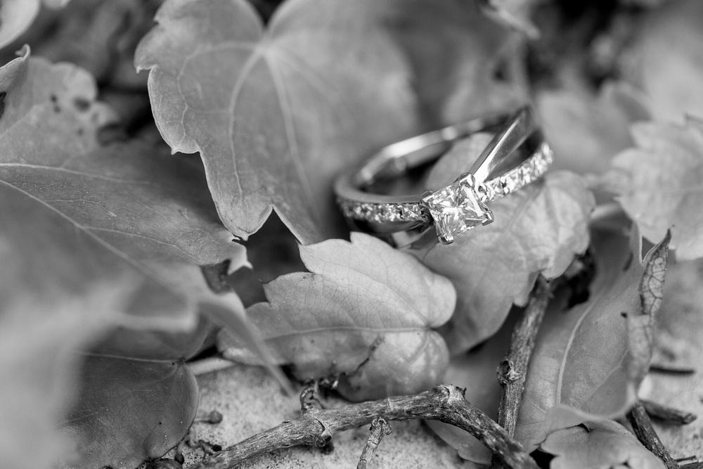 Jen_Montgomery_Photography_Leanna&NateSmall-FaceBookQuality-12BW.JPG