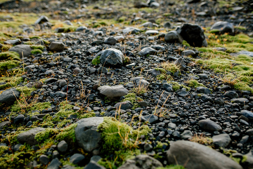 Jen_Montgomery_Photography_Engagement_Iceland_JenAlex_FB-38.jpg
