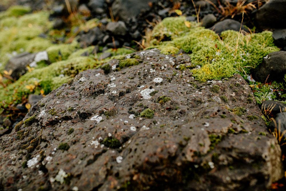 Jen_Montgomery_Photography_Engagement_Iceland_JenAlex_FB-40.jpg