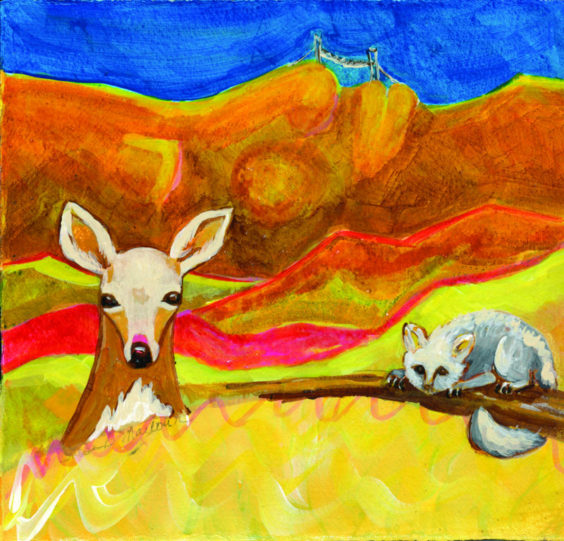 Deer and Opossum