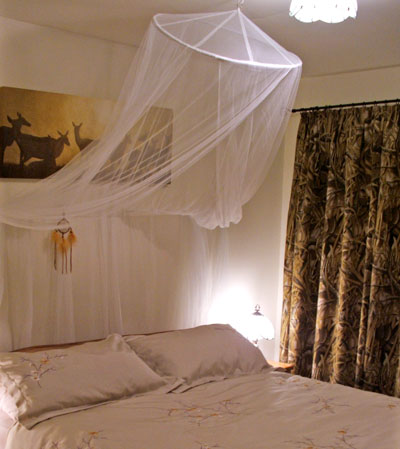 Cabbage-Tree-Cottage-room.jpg