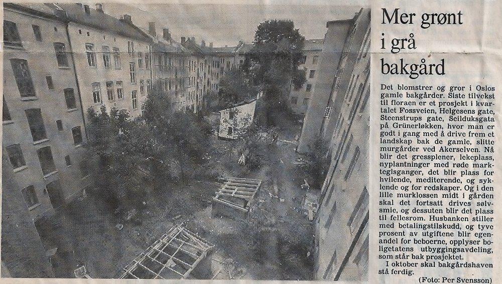 Denne lille notisen sto i Aftenposten torsdag 23. august 1984.