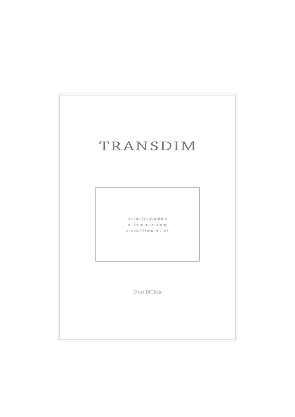 TransDim.jpg