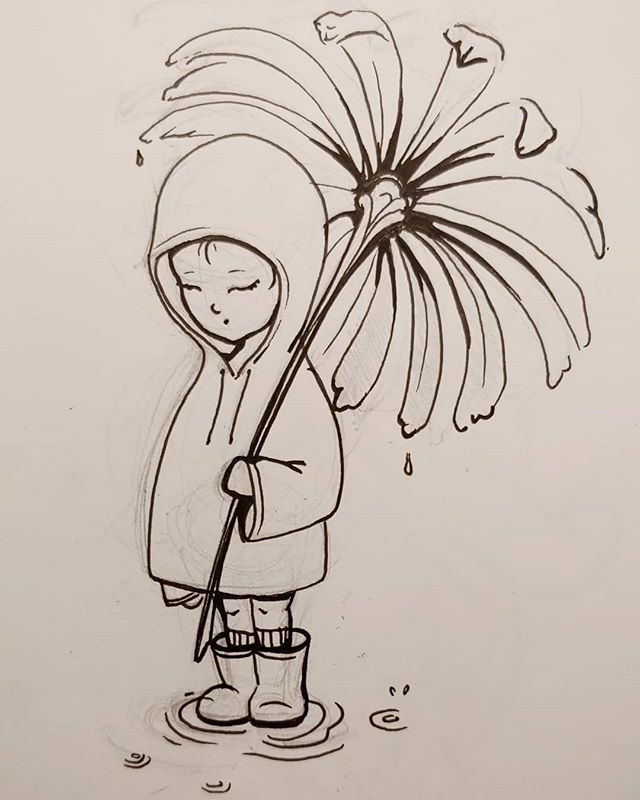 drizzly daisy
