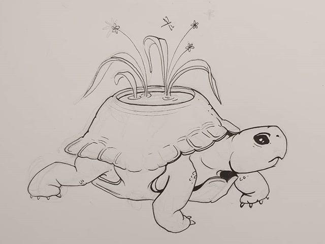 lil turtle pond