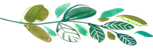 leaf copy.jpg