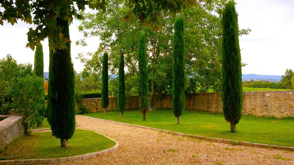 saint-medard-wine-provence-03