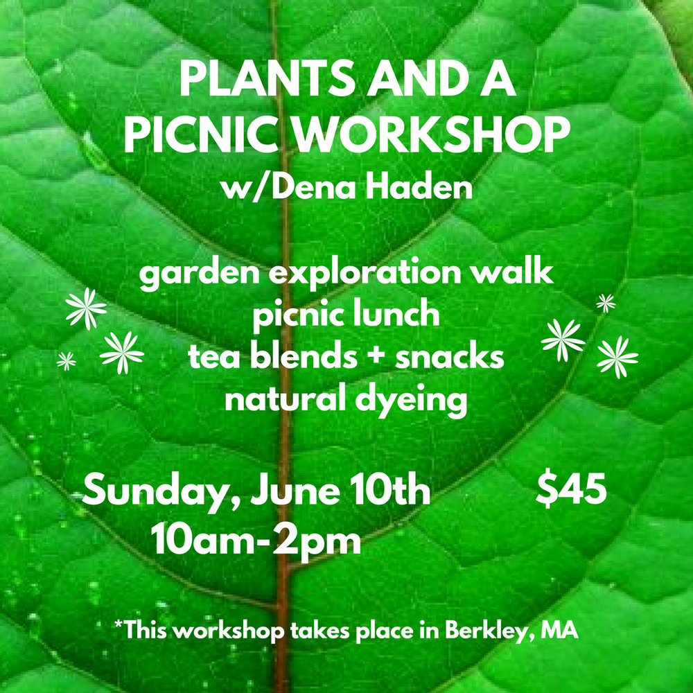 Plants and a Picnic Workshop w/Dena Haden - Sunday, June 10th from 10am-2pmCome and explore the land and plants through an immersive day outside in Berkley, MA, exploring native plants and trees while learning techniques to utilize plant materials for herbal teas, natural dyeing, and artistic processes.We will have a plant/garden exploration and walk throughout the gardens and wooded property where students will learn basic skills on how to grow, forage, and create their own plant based processes at home.Materials will be provided as well as light snacks and herbal tea from Bilo Herbs. Bring your own picnic for lunch!Dena is an artist, gardener and the Program Manager at New Bedford's new Co-Creative Center$45 per per person(This workshop DOES NOT take place at Hippo. It will be held on Dena's property in Berkley, MA. The address will be provided after your ticket has been purchased)Check out Dena's work HEREClick HERE for TICKETSRSVP on Facebook