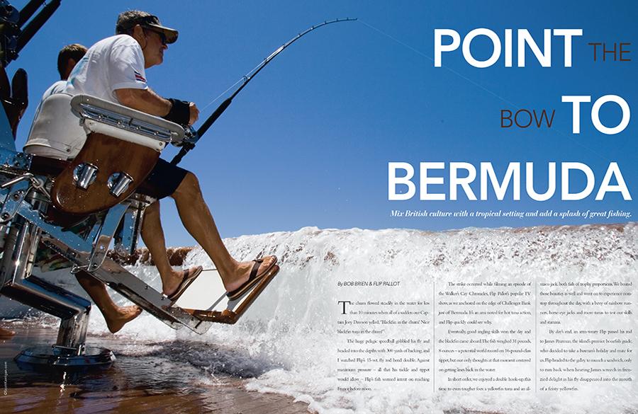 DESTINATION-FISH-BERMUDA.jpg
