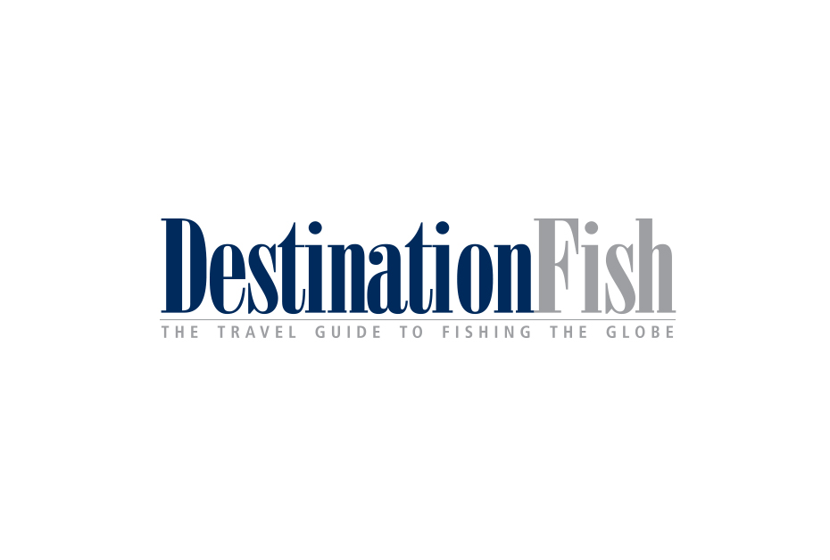 DestinationFish.jpg