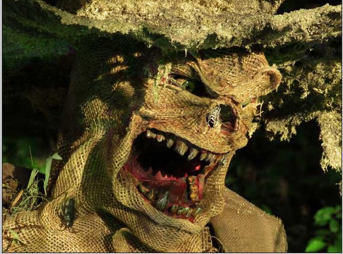 2nd scarecrow close up.jpg