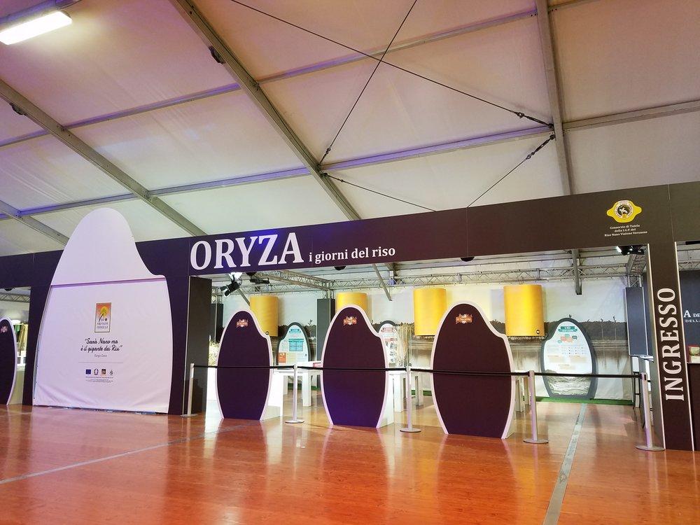 ORYZA_1.jpg