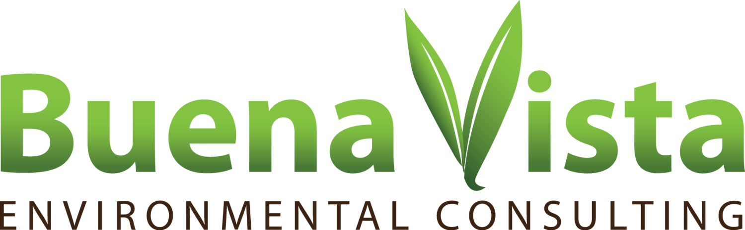Buena Vista Environmental Consulting