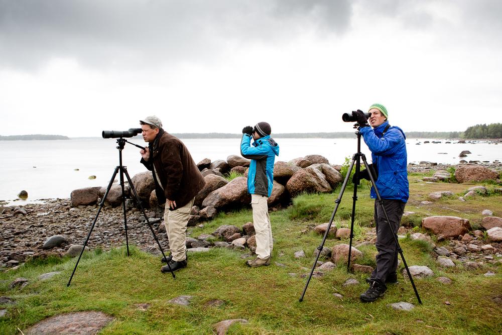 Bird watchers in Virolahti.  © Maaseudun Tulevaisuus
