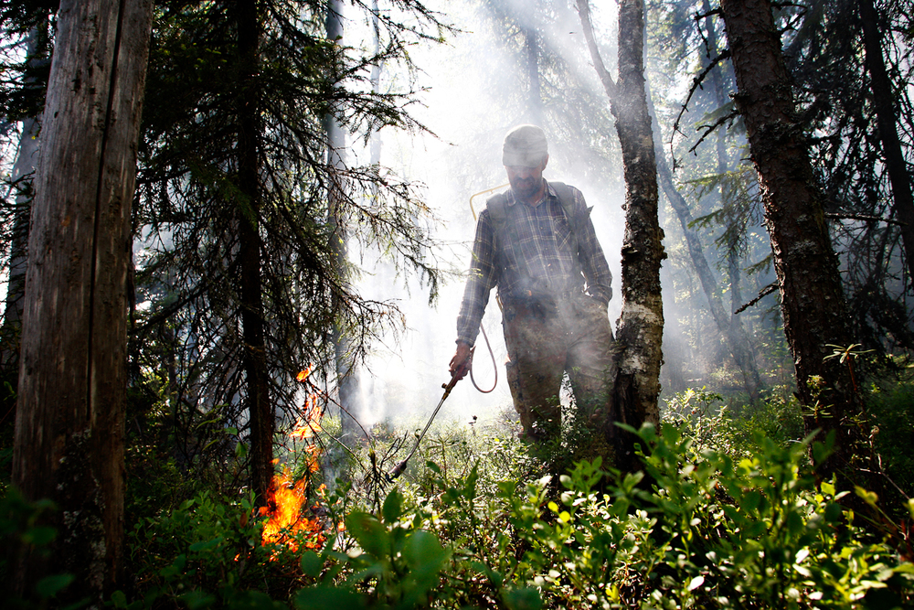 Burn-clearing is still in use in Finland.  © Kainuun Sanomat