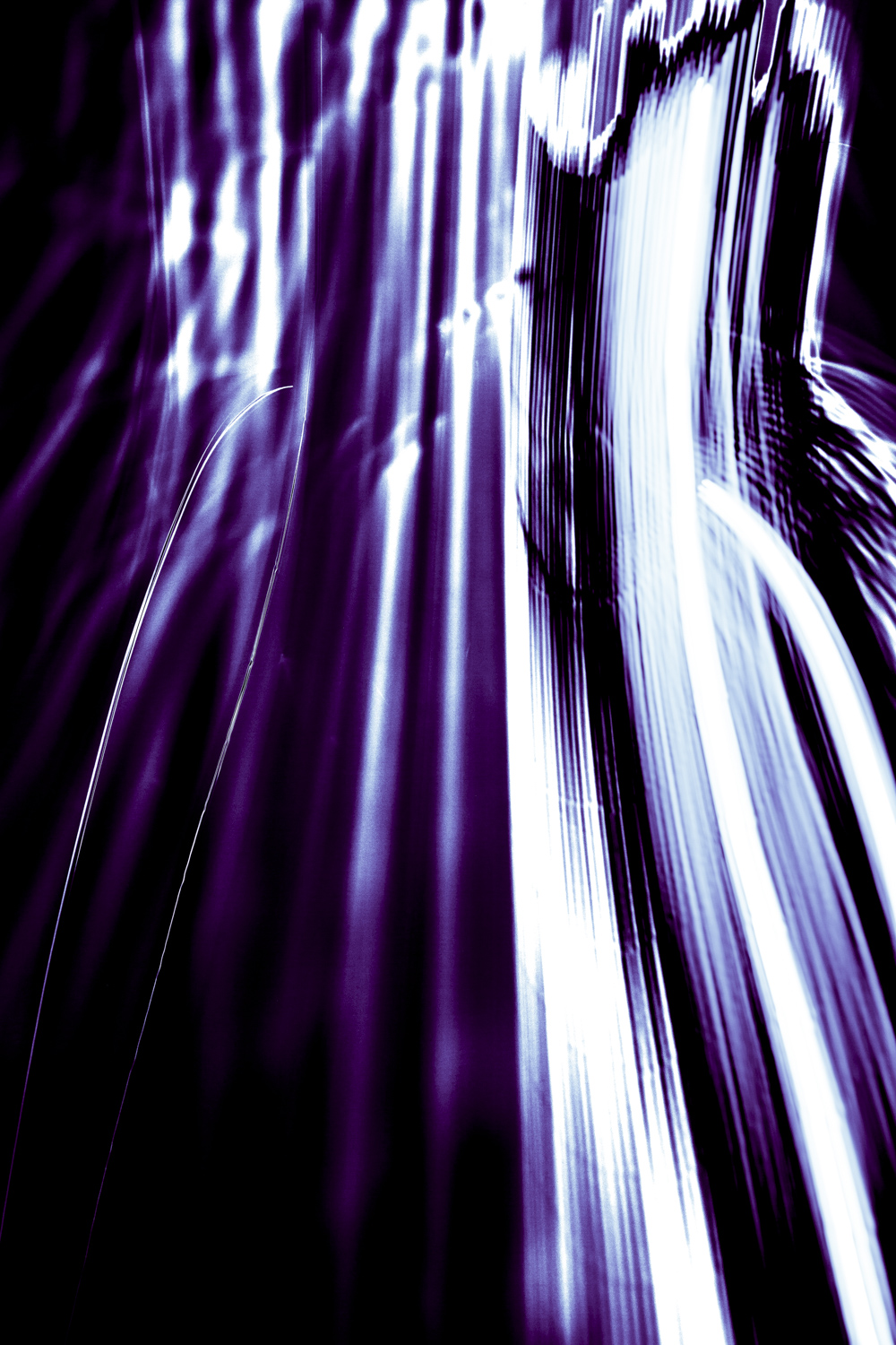 Purple Light-8275-3.jpg