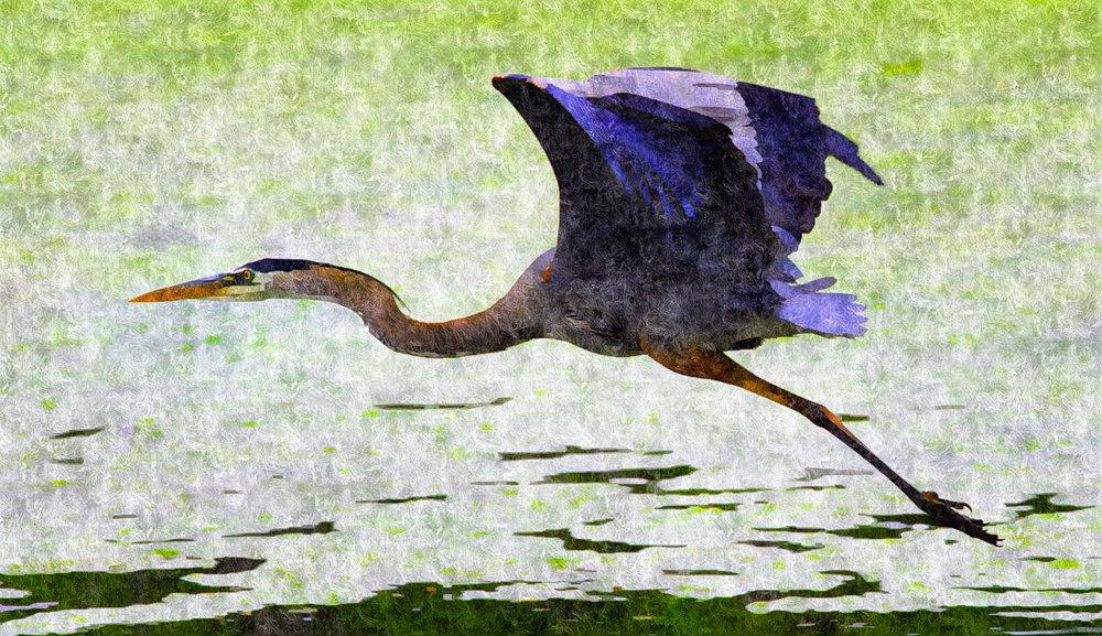 Storybook Heron