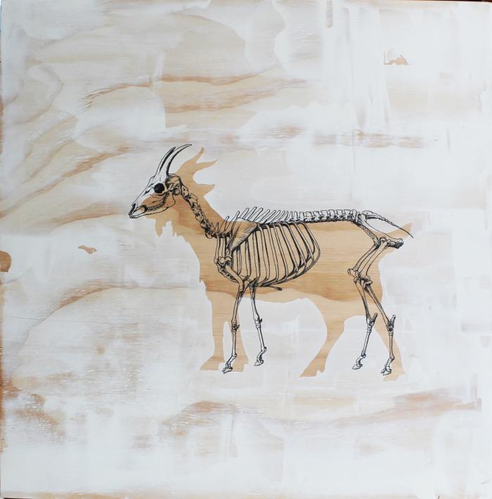 Dead or Alive Goat