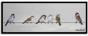 Sparrow Gossip