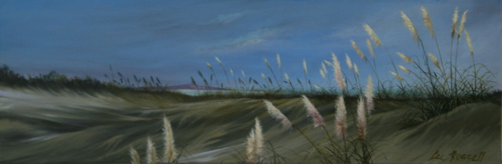 Coastal Dunes Kapiti