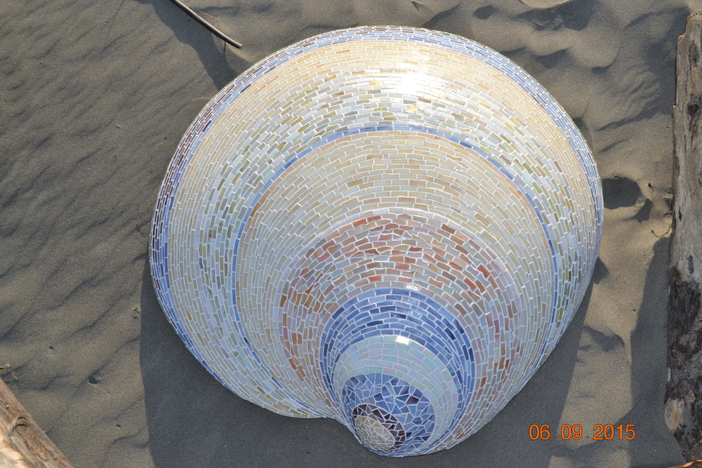 Mosaic Shell.JPG