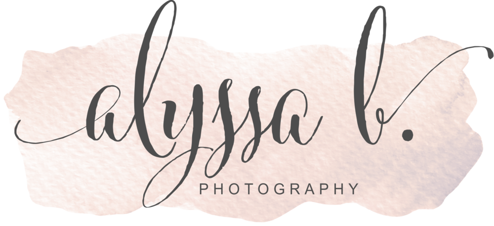 alyssa b. photography