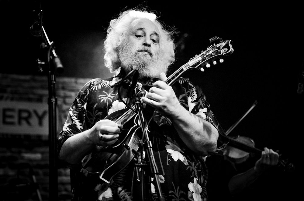 DAVID GRISMAN   © Mandy Pichler 2017