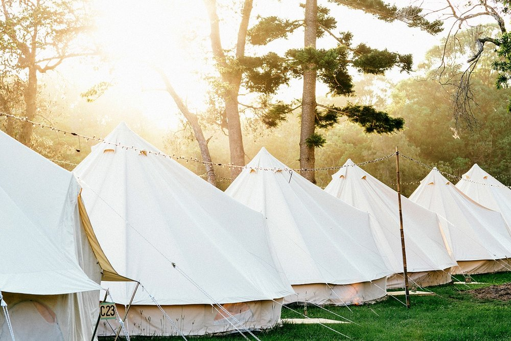 Bell Tent  - Real beds (up to three share), solar light, access to regularly serviced communal toilets & showers...READ MORE