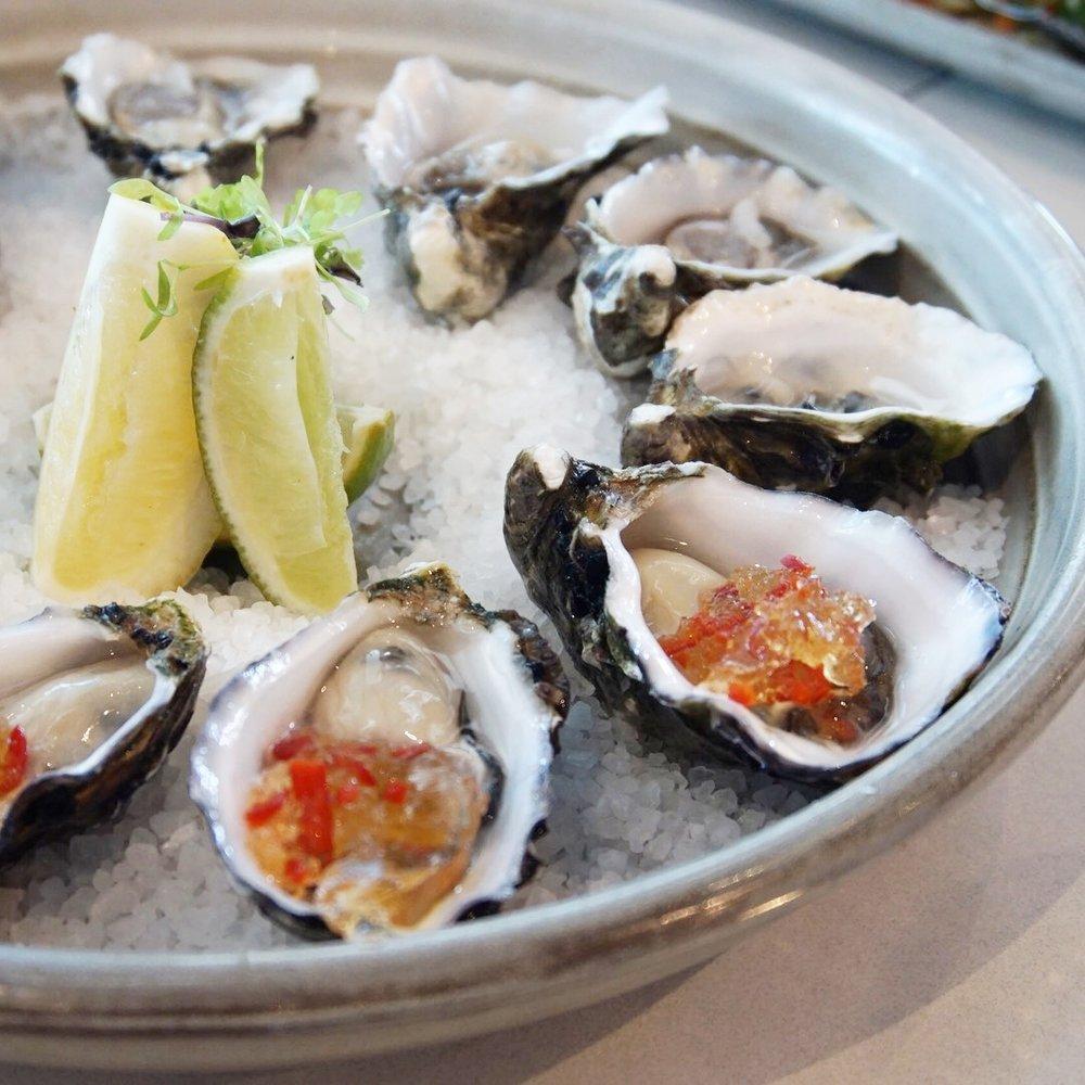 Oysters Odyssea