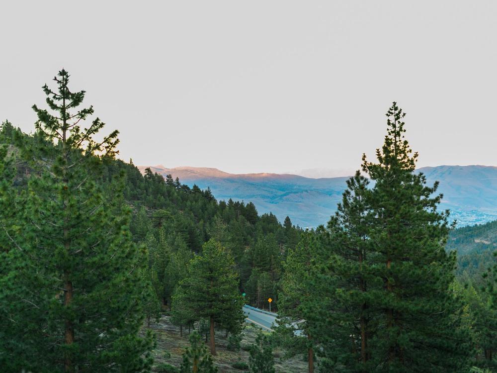 Tannenbaum-Wedding-Lake-Tahoe-Wedding-Photographer-137.jpg