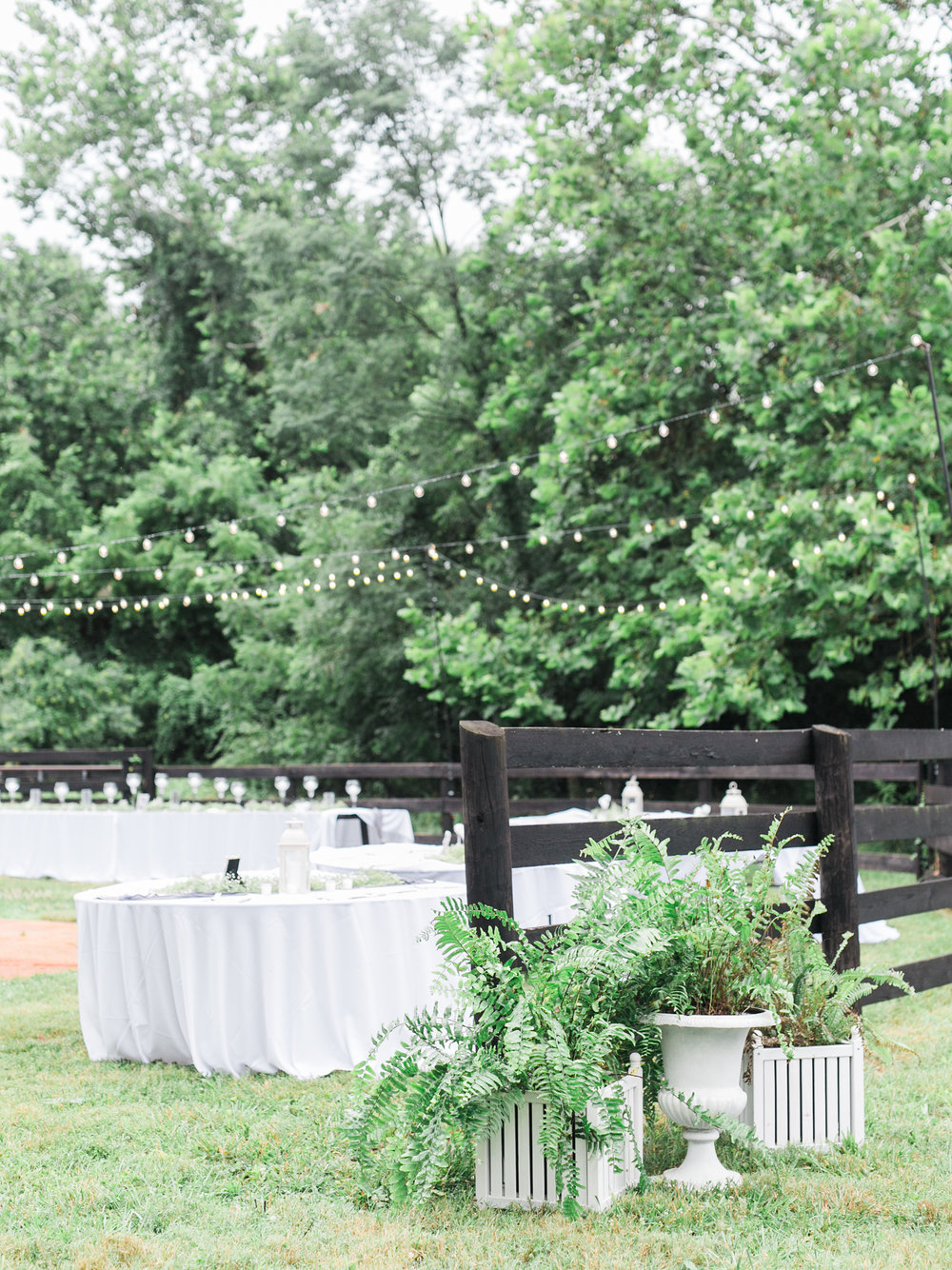 Virginia-Wedding-Photographer-Alex-Keith-30.jpg