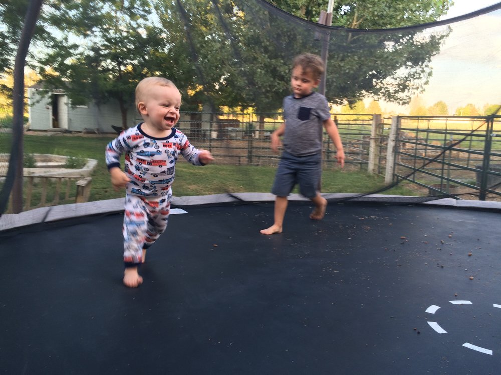 Finn's first time on a trampoline, in Grandma's backyard. You could say it was a hit, until Asher brought a remote-control car onboard and kept running Finn down.